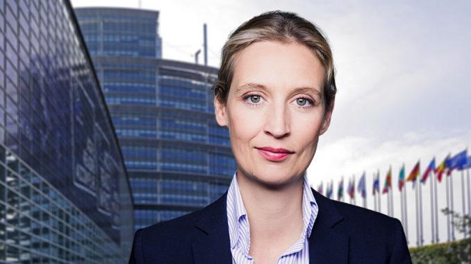 Dr. Alice Weidel, Vorsitzende der AfD-Bundestagsfraktion, FotoAfD/Pixabay_hpgruesen